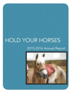 hyh-2015-16-annual-report_page_1