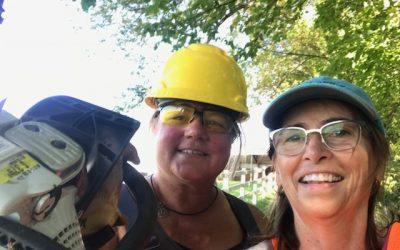 Board Members Wielding Chain Saws